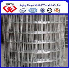 Galvanized welded wire mesh 2*2 fence mesh
