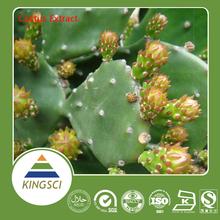100% Organic San pedro cactus Extract Cactus plant extract powder 10:1