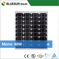Bluesun good price mono 40W 50W solar panel and solar module with CE TUV UL certificate