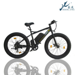 Fat bike,easy ride motorized electric city bike,kids bike with handle