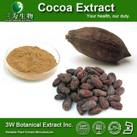 GMP Factory Cocoa Powder alkalized High Fat Cocoa Powder Black Cocoa Powder