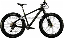 Carbon Fat Bike