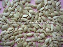 chinese shine skin pumpkin seeds new crop
