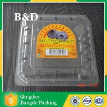 High quality PET/PVC/PS/PP Clamshell Blister Packing Tray for Food/Fruits