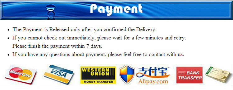 payment Template.jpg
