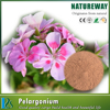 Hot sale Pelargonium sidoides extract CAS NO.105-41-9