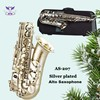 Foreign musical instruments alto sax from China