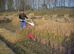 Mini Harvester Type and tractor wheat cutting machine 4G100