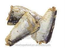 Canned sardinha peixe nome científico com água salgada