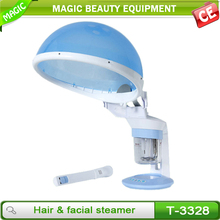 3328 2 in 1 facial and head steamer