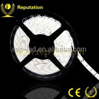 China supplier waterproof 14.4w/m 5000k 5050 smd led strip light light 24 volt for 2 years warranty