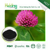 Manufactor offer high purity natural red clover powder extract