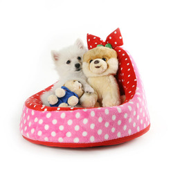 Super soft lucky cute cat pet strawberry dog cat nest beds