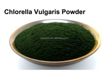 Can be used in the dyeing of food to add raw materials chlorella powder