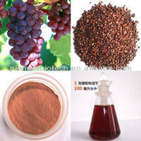 Favorable price best quality Grape seed extract in bulk supply