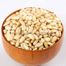 pine nuts wholesale/red pine nuts for sale