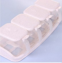 Manufacturer the best plastic seasoning box