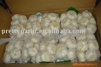 chinese fresh normal white garlic