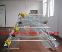 3 Tier Automatic Battery Type Breeding Chicken Cage