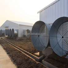 Professional Design Light Steel Structure Poultry House/Chicken House