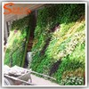 Chinese modular green wall system of fake plant wall green wall module system