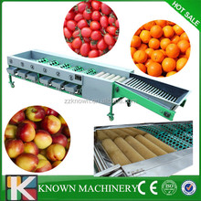 All kinds of fruit sorting machine,apple.orange/pitch/pear/tomato sorting machine