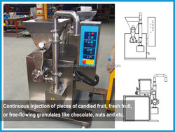 Galato Fruit Feeding Plant, Gelato Fruit Ice Cream Mixing Line
