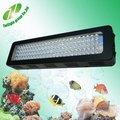 100W Led acuario con vida luz acuario pecera claro