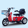 2015 New Double Seat Handicapped Electric Tricycle Pedal Assisted