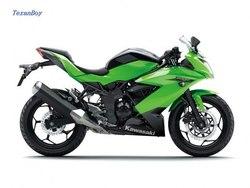 Kawasaki Z250SL Cheapest price free shipping china port door to door shipment