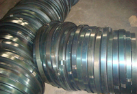 Wholesale Factory Packing Metal Strip/Strap