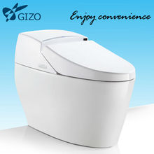 Automatic toilet without water tank