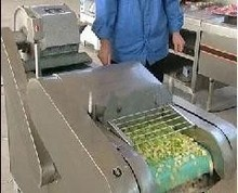 supply fruit and vegetable cutter machine from China