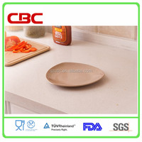 professional chef dish to Europe in hot selling