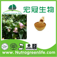 100% pure natural Codonopsis Extract/Codonopsis Extract powder/codonopsis root extract powder