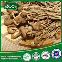 Organic Fresh Agrocybe Mushroom Cheap Price