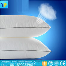 chinese wholesale adult 100% cotton anti-apnea professional feather pillow