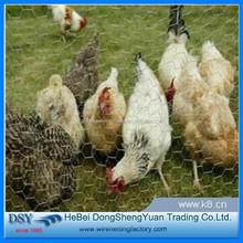 chain link fence chicken coop /chicken cage