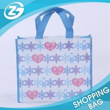 Factory Price Fashion Cheap Folded Nonwoven Bag for Shopping