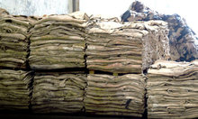 WET SALTED COW HIDES (CHEAP PRICE AND BEST GRADE)