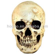 Holloween Skull Decoration