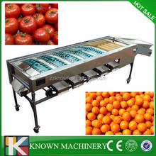 Factory selling fruit grading machine/tomato grading machine/cherry tomato grading machine