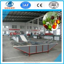 hot sale wonderful high quality vegetable drying machine