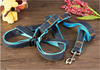 New Design Fashion Collar And Leash Wholesale Pet Harness for 2015