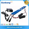 best choise customized rechargeable lipo 12v battery with charger for stip led light