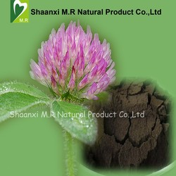 Factory Supply Red Clover Extract Isoflavones 20% Powder