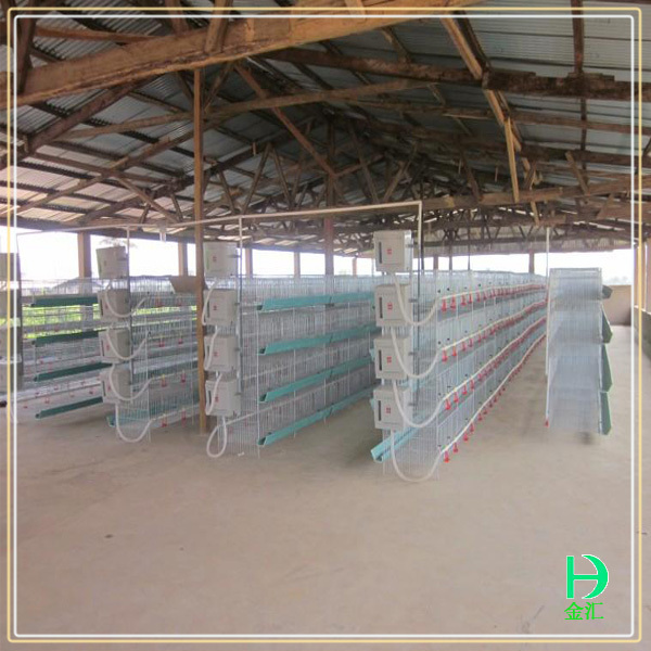 Poultry farm equipment build chicken coop wholesale bird for Cheap chicken pens for sale