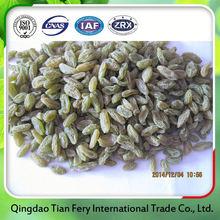 low price dried fruit raisins
