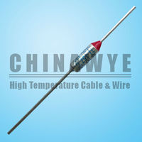 High Breaking Capacity and Automotive Usage Motor Thermal Fuse