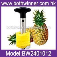 TR037 fruit and vegetable peeling machine